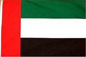 UAE Walkie Talkie